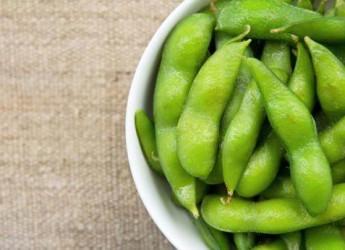 зелень крайне полезна для ежедневного рациона