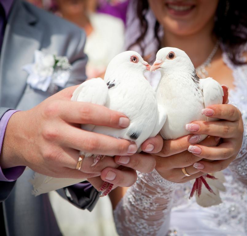 Свадебных примет существует огромное количество. Благодаря им свадьбы становятся более веселыми и запоминающимися.
