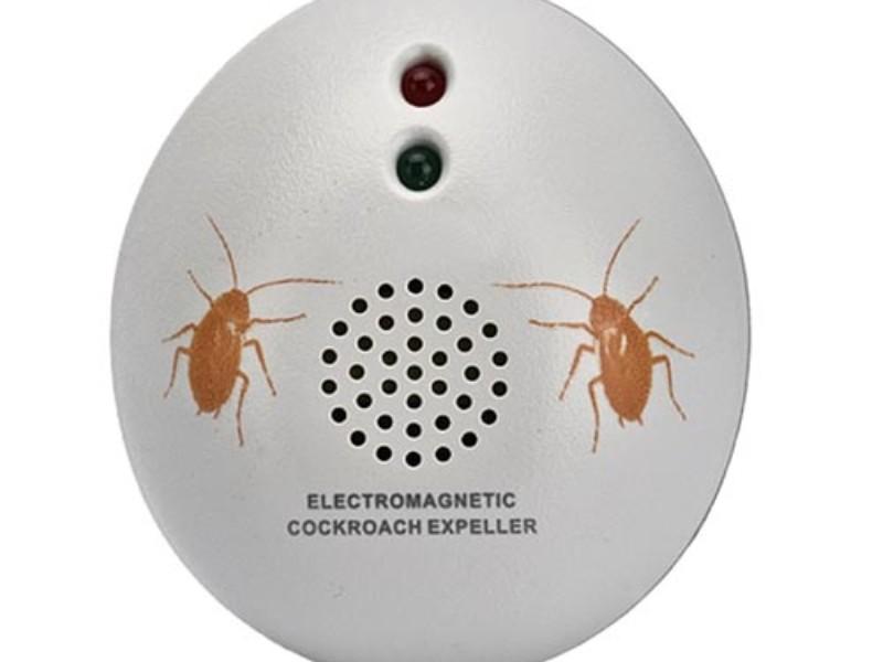 Ловушки сегодня считаются самым удобным средством от тараканов.