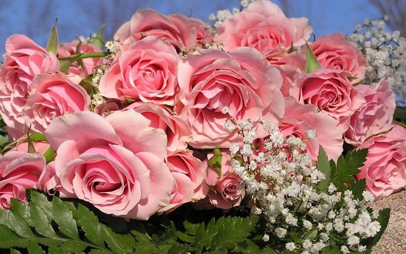 Муж может подарить на первый юбилей свадьбы что угодно, главное, чтобы он про розы не забыл.