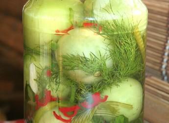 Из недозревших томатов получаются отменные консервированные блюда.