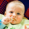 Малыш с удовольствием попробует новые ягоды и фрукты: груши, сливы, арбуз, дыню.