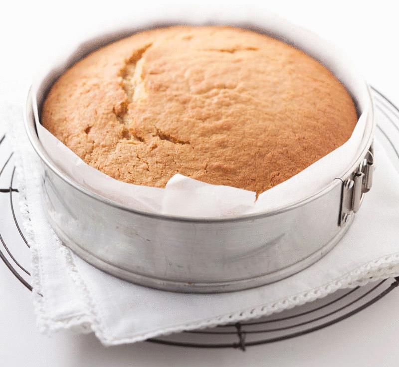Если вам нужен бисквитный торт — испеките несколько таких пышных бисквитиков, пропитайте их сладким сиропом и соберите торт, промазав любым кремом и украсив по своему вкусу!