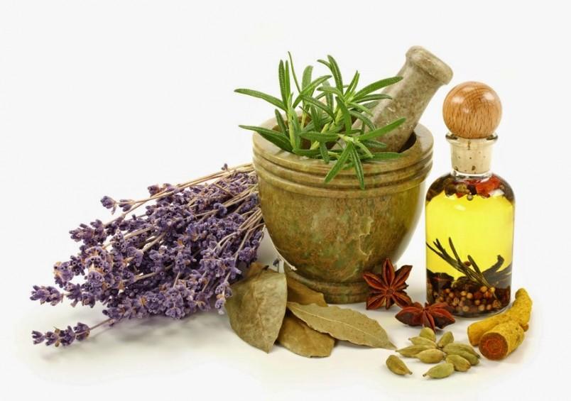 Приобретая травяной препарат или сбор в аптеке, не поленитесь почитать, какая трава для похудения входит в его состав.
