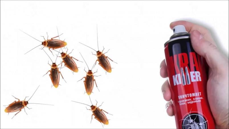 Проверено, что тараканы сами и навсегда покидают квартиры, в которых созданы непригодные для их жизни условия.