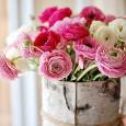 Если растение перед периодом цветения сбрасывает бутоны, то это говорит об излишнем увлажнении субстрата.