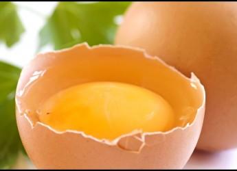 Есть одно неоспоримое преимущество, которым обладает такая маска для лица: яичный белок не заставляет себя ждать, его воздействие на кожу практически мгновенно.