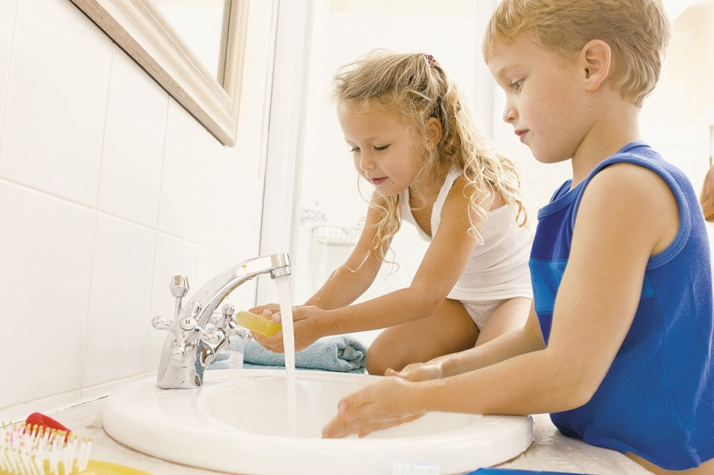 Самая главная мера профилактики лямлиоза - это чистота.