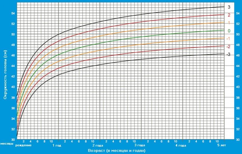 Таблица 1. График отражающий динамику роста головы ребенка по месяцам.