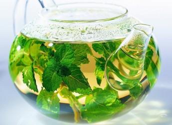 Активные компоненты, входящие в состав растений, способны воздействовать на обмен веществ, регулируют их деятельность и ускоряют процесс потери веса