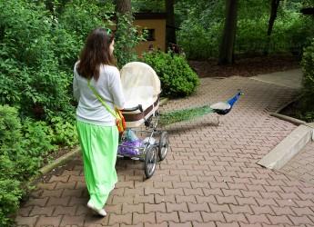 Первая прогулка с новорожденным – всегда волнительное событие.